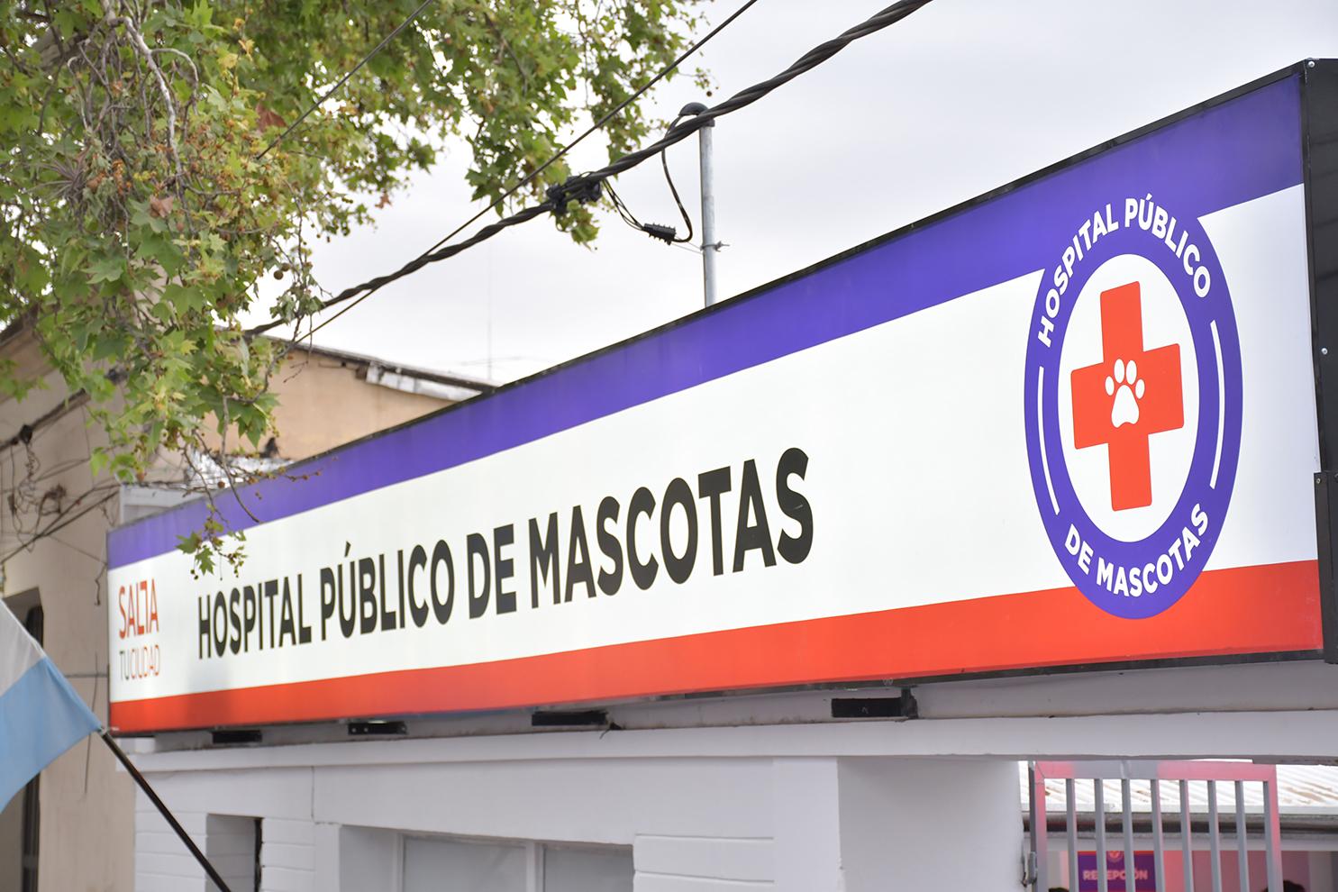Hospital Público de Mascotas - Foto: municipalidadsalta.gob.ar