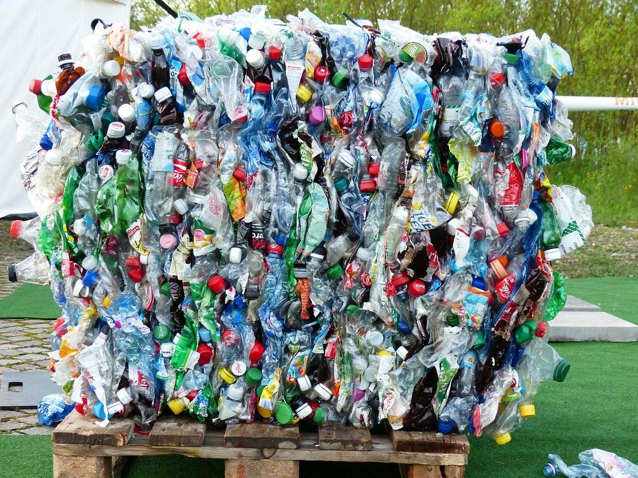 Salta Consciente - Reciclaje