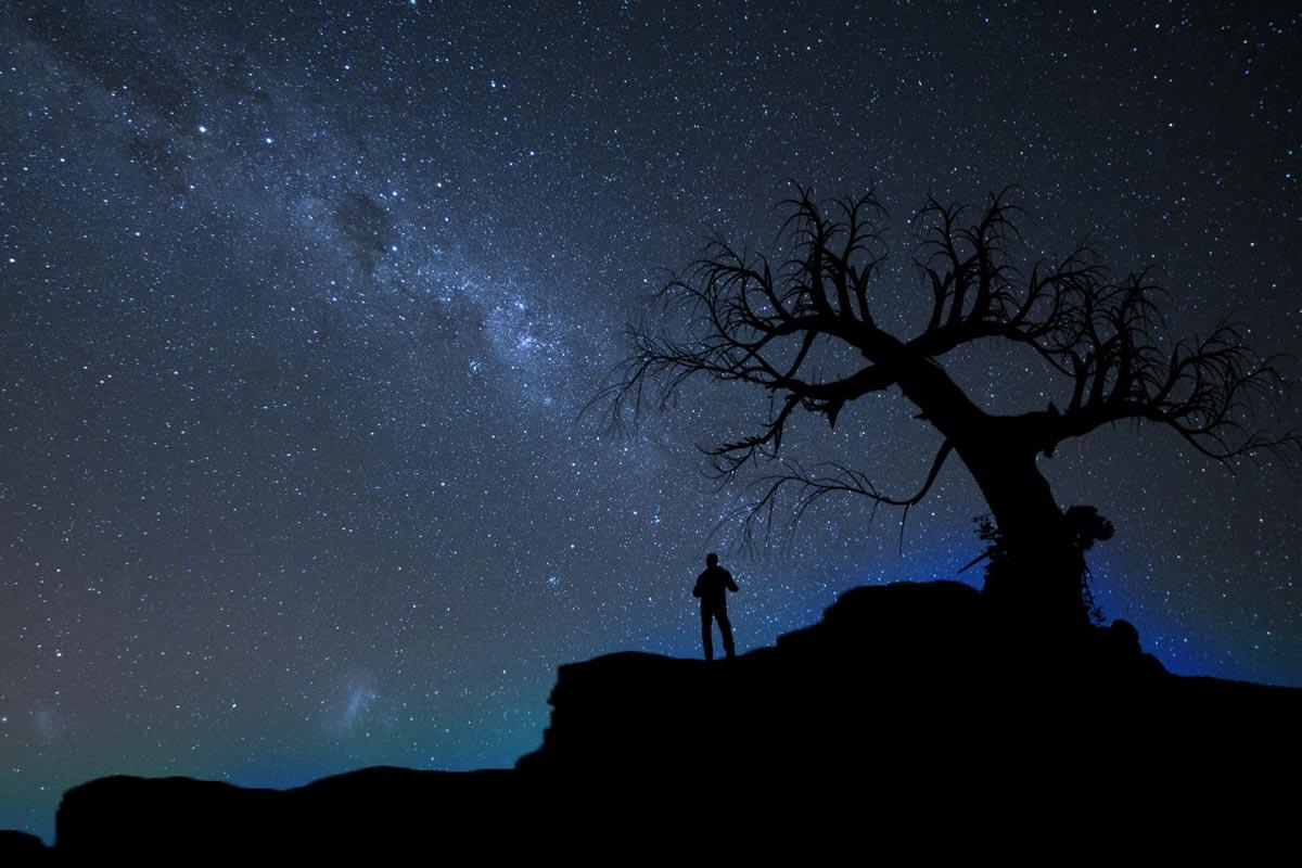 Viajero de noche