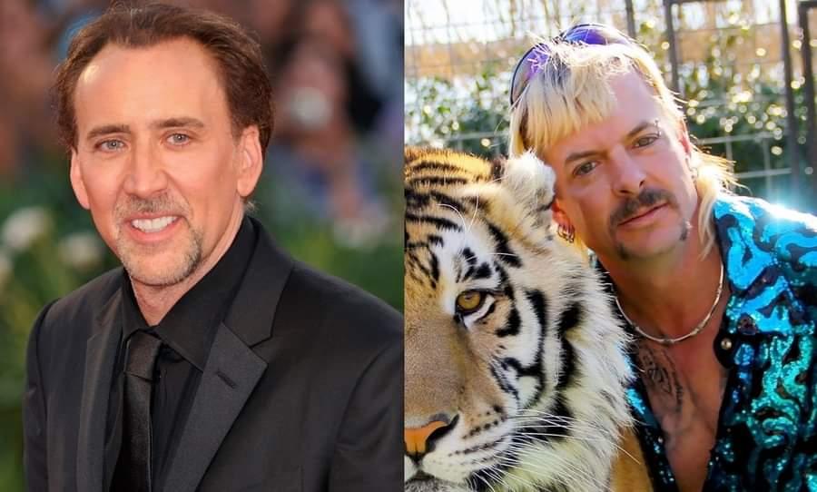 Nicolas Cage Rey Tigre