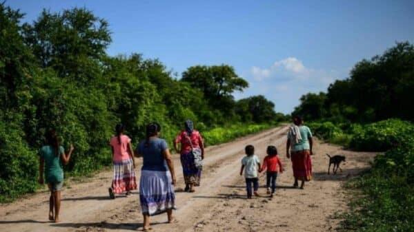 comunidades wichí en Salta