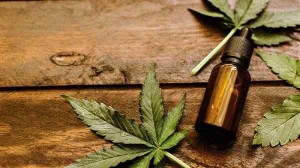Cannabis medicinal en Salta
