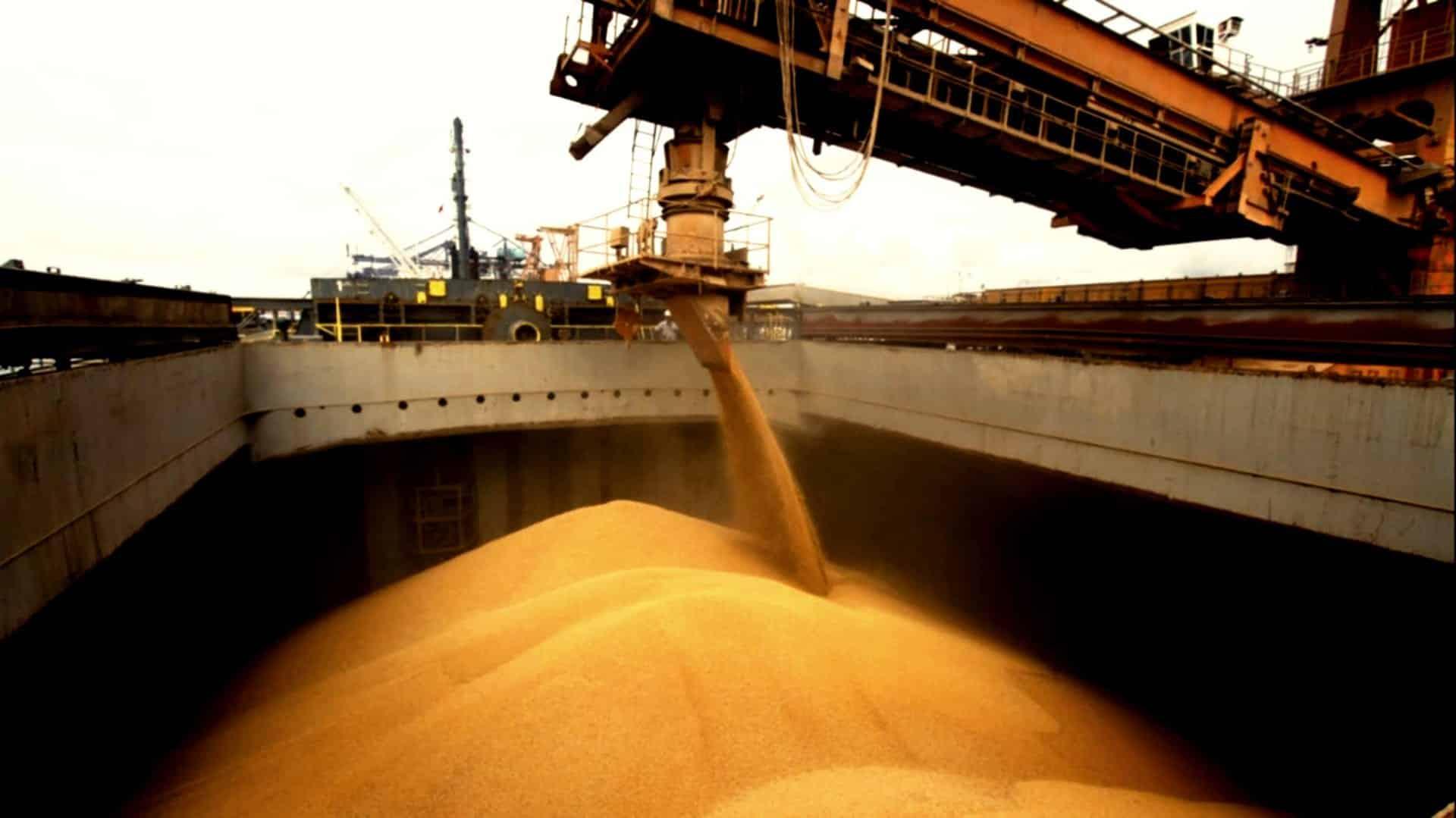 exportaciones de maíz